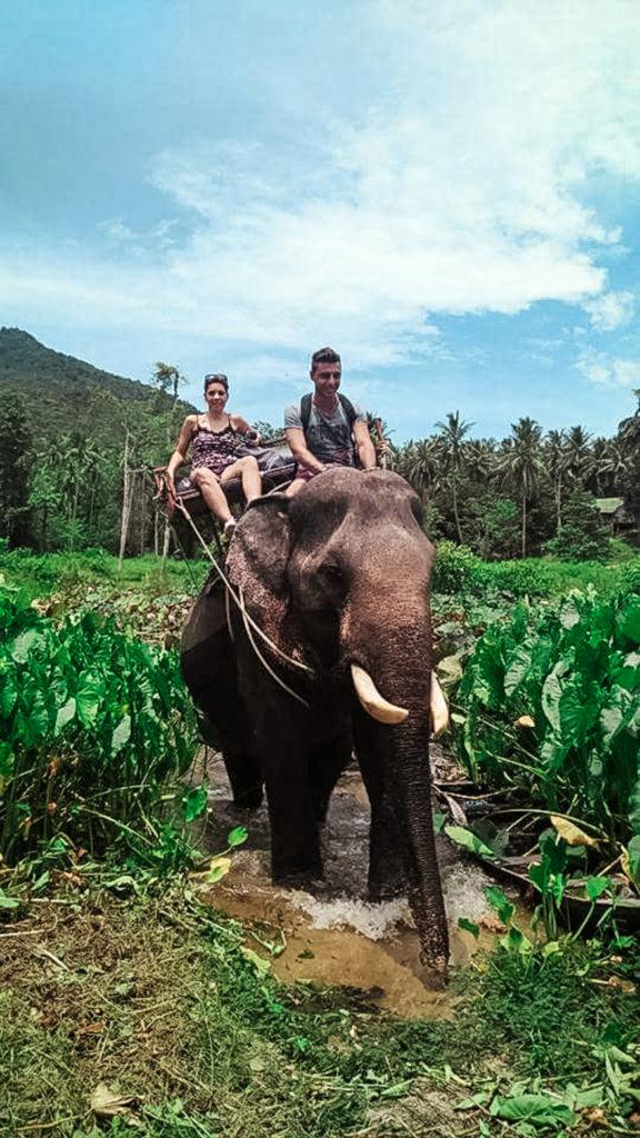 Koh PHangan, Elephant trekking