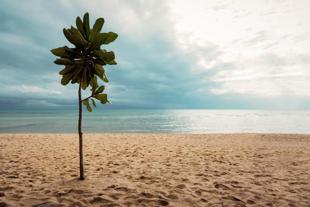 Koh Phangan, Baan Tai Beach